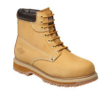 Dickies Cleveland Super Safety Boot All Colours & Sizes