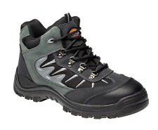 Dickies Storm Super Safety Trainer All Colours & Sizes