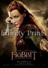 The Hobbit Desolation of Smaug Movie Poster F A3 / A4