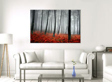 LARGE CANVAS WALL ART WOODLAND RED LEAVES TREES IN AUTUMN PICTURE STUNNING PRINT