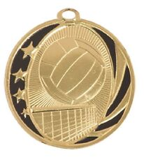 Volleyball Medal Award Trophy With Free Lanyard MS711 School Team Sports