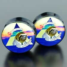 Pair Acrylic Ear Plugs Flesh Tunnels Stretchers Expanders Screw Sloth Suit Slow