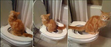 New Creative Seat Cat Behaving Amazing in WC Easy-Step-to-Teach free shipping