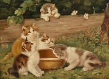 Animals Cute kitten HD Print Oil painting Picture on canvas L062