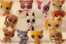 LPS LITTLEST PET SHOP DOGS, CATS & PUPPIES. GREAT INTERNATIONAL COMBINED POSTAGE