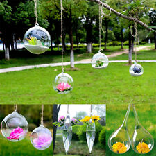 Hanging Glass Flowers Vase Hydroponic pot Container Home Party Wedding  Decors