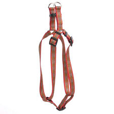 Celtic Step-In Dog Harness | Yellow Dog Design