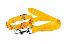 Flower Girl Leather Dog Collar Leash Set Soft Padded Small Medium Large Yellow