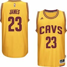 LeBron James Cleveland Cavaliers Youth Adidas New 2014-15 Swingman NBA Jersey