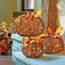 LIGHTED PRE-LIT GRAPEVINE TWIG PUMPKINS Autumn Fall Harvest Thanksgiving Decor