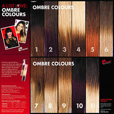 100% Real Human Hair Ombre Clip in Hair Extensions
