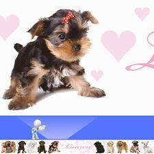 ADORABLE ANIMALS personalised bedroom WALL BORDER strips dog puppy cat kitten
