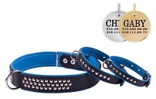 CollarDirect Leather Studded Dog Collar FREE PERSONALIZED ID TAG Blue Puppy
