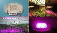 100W Deep Red 660nm / Blue 4:1 450nm High Power LED Plant Grow Growth Light Lamp