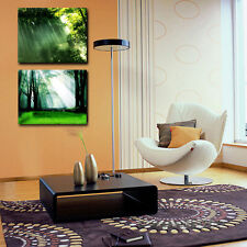 Green Forest Nature Scenery Wall Art Home Decor Trees Poster Print - No Framed