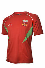 Welsh 6 nations Rugby Supporters Flux T-Shirt Red/Emerald  S - XXXXL
