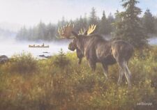 "RD3086 In His Domain Robert Duncan 5""x7"" framed or unframed print moose woods"