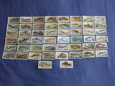 BROOKE BOND TEA CARDS:FRESHWATER FISH 1960:BLUE BACK:BUY INDIVIDUALLY NO's 1-50