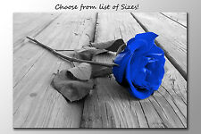 LARGE FRAMED CANVAS WALL ART  BLUE & GREY ROSE PICTURE STUNNING NEW PRINT FLOWER
