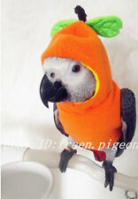 top Parrot Bird Cockatiel cockatoo Parakeet Macaw Conure Birdlover clothes