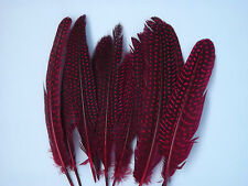 10 Guinea Fowl wings, GRADE AA, Fly tying materials, feathers, Crafts.
