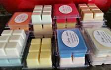 Candle ClamShell Wickless Candles. HIghly Scented by Living Aroma