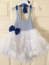 Country Gingham Checkered Ruffle Petti Dress in Pink and Blue Size 2T