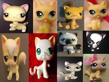 Littlest Pet Shop LPS Toy Figure Various Cat Kitten