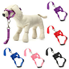 NEW STOP PULLING DOG HALTER TRAINING LEAD TAKES SECONDS TO PUT ON THE DOG UK