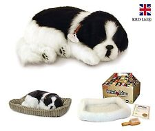 Precious Petzzz BORDER COLLIE Lifelike Breathing Puppy Dog Birthday Gift Pet UK