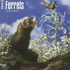 Ferrets 2014 Wall Calendar by Inc Browntrout Publishers