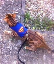 Mynwood Cat Walking Jacket Harness Vest  Holster Superman/Girl, Batman, Starwars