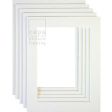 Picture Photo Mounts, Pack of 10, Bevel Cut, White Core, Acid Free