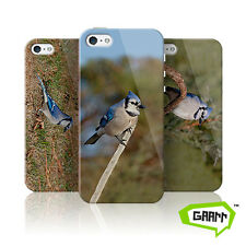 Blue Jay Protective Snap on Hard Shell iPhone 5 Case 5s Cover