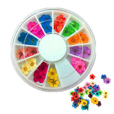 WOW 36/60Pcs 3D Flower Nail Art Sticker Dried DIY Tips Acrylic Decoration Wheel