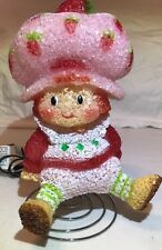 Vintage Strawberry Shortcake cute Gel Plastic Popcorn Night Lamp