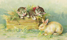 Kittens & Bunny ~ Vintage, Cats, Animals ~ Cross Stitch Pattern