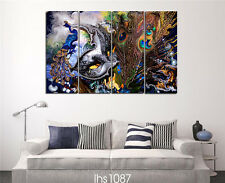 Modern Home Decor Canvas Painting HD Print Picture Art Abstract Peacock 4pcs