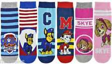 6 Pairs of Childrens Official Paw PatrolMarshall Chase & Sky Character Socks