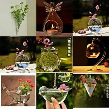 Various Clear Glass Hydroponic Flower Vase Pot Container Candlestick Holder