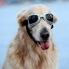 PETLESO Large Dog Goggles Sunglasses UV Golden Retriever