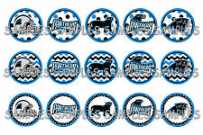 "NFL Carolina Panthers Dots PRE CUTS or DIGITAL SHEET 1"" Circle Bottle Caps"