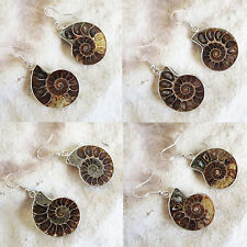 Natural Polished AMMONITE FOSSIL Stone DANGLE EARRINGS - Choose your stones