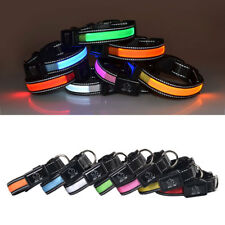 Pet Dog Cat Collar LED Lighting USB Glowing Rechargeable Reflective Band