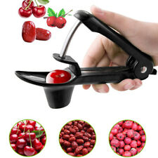Olive Core Seed Remover Fruit Vegetable Tool Cherry Pitter Go Nuclear Device