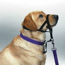 HALTI NO PULL HEADCOLLAR HARNESS for DOGS - Train Your Dog to Walk Properly !