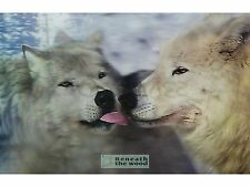 3D ART - MOVING ANIMAL PICTURES,WOLVES, HORSES,LIONS,FISH, DOLPHINS GREAT GIFTS!