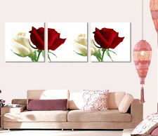 Red & White Roses large wall Decorative Canvas Print Set High quality Framed