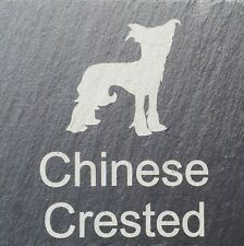 Beware Of The Chinese crested Natural Slate Dog Plaque Sign  11 Designs