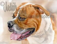 ALL AMERICAN Bulldog Dog Art Print of Watercolor Painting Judith Stein Signed
